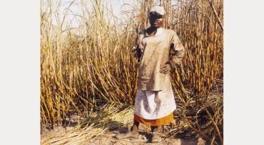 Zwelethu Mthetwa